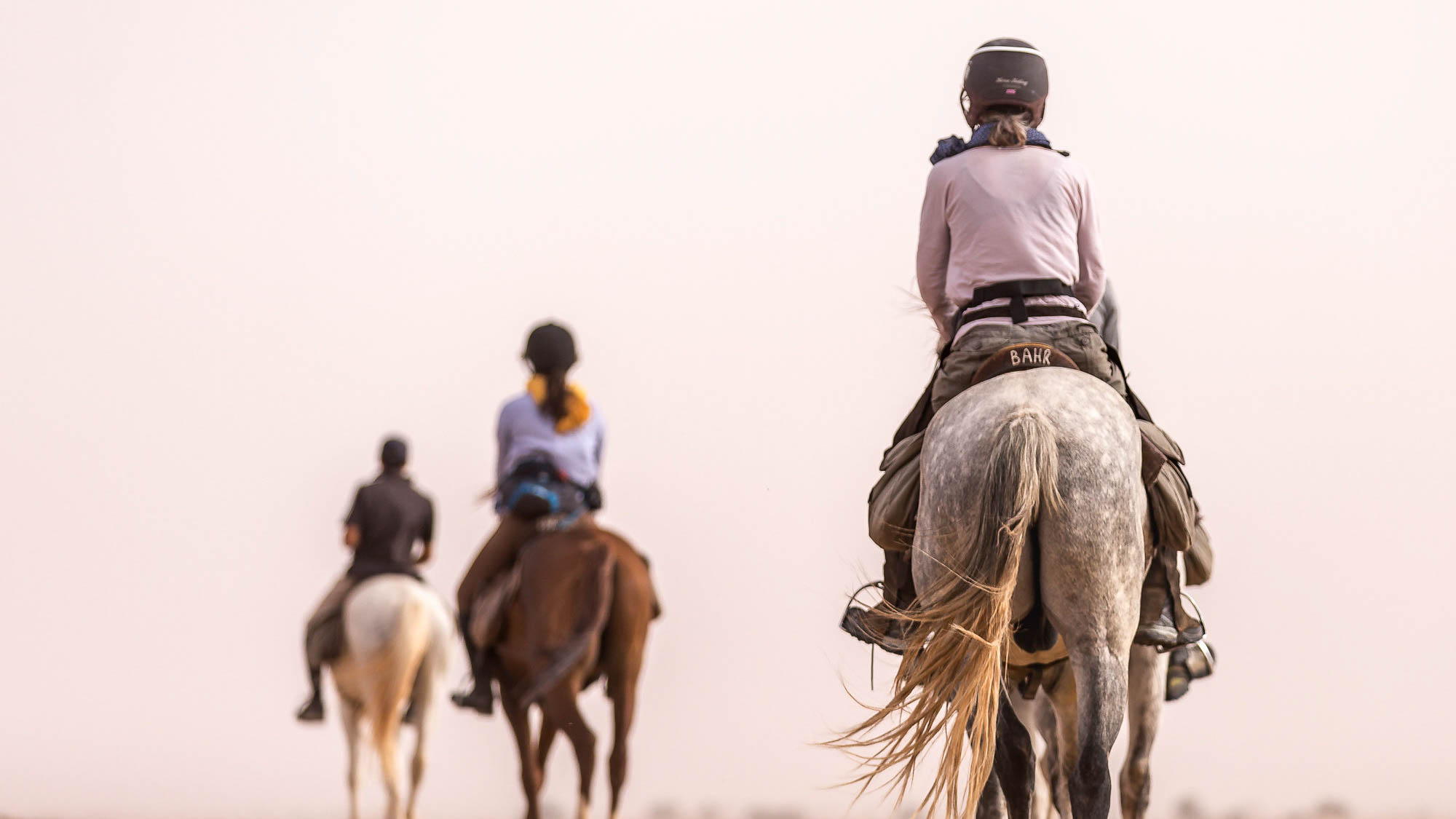 Horse Riding by Sport Travel